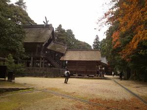 Sshimane_008